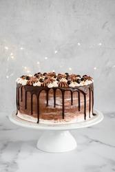 chocolate drip cake vegan festive birthday cake vanilla delicious modern tart cake vegan
