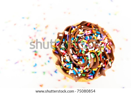 Chocolate Frosting Cupcake with Lots of Sprinkles
