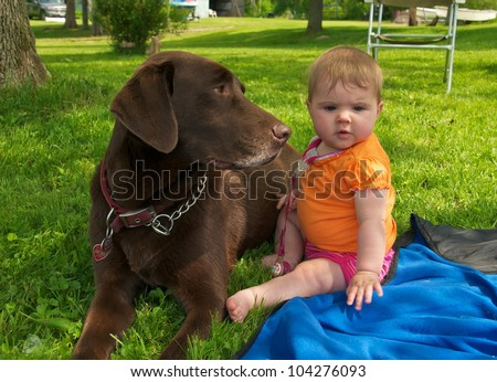 Chocolate Lab sits lovingly next to the little baby girl