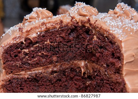 Chocolate layered cake with chocolate frosting and sprinkles