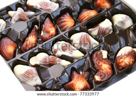 Chocolate seashells in box isolated on white background.