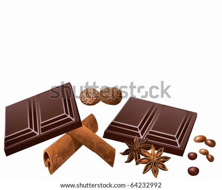 Chocolate, star anise, cinnamon and nutmeg on white background