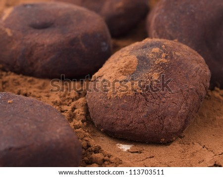 chocolate with cocoa powder - stock photo