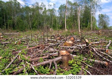 chopping wood - stock photo