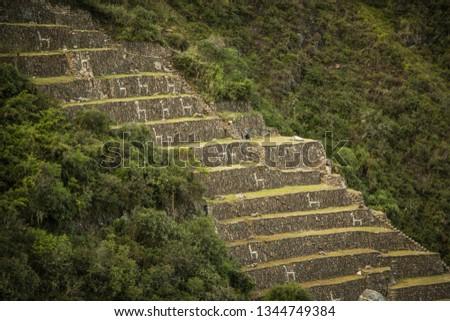 Choquequirao, Cusco - Peru #1344749384