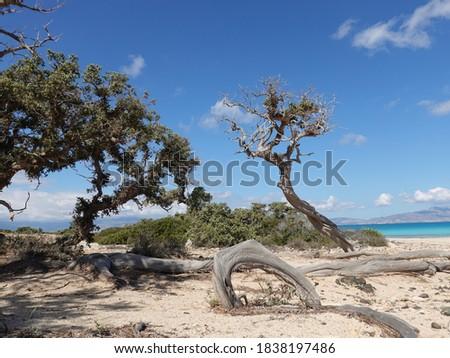 Chrissi Island in Greece Crete