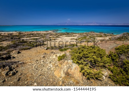 Chrissy island scenery on a sunny summer day with dry trees, brown soil and blue clear sky with haze. Crete, Greece. The southernmost island of Europe with a dry African climate.