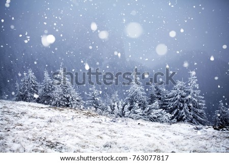 Christmas and New Year background with winter trees in mountains covered with fresh snow - Magic holiday background #763077817