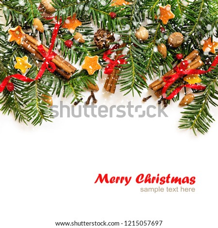 christmas and new year border design on the white background with fir tree and orange dry