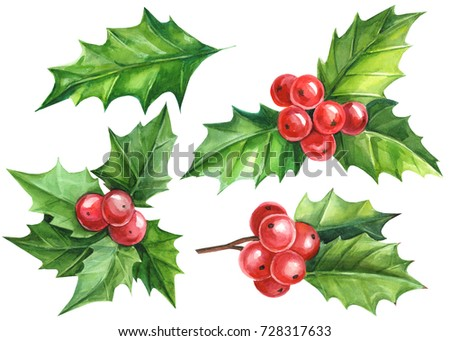 Christmas and New Year symbol decorative elements. Holly berry set. Watercolor colorful floral