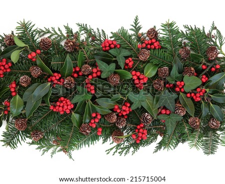Christmas and winter flora with holly ivy mistletoe spruce fir and pine cones over white background