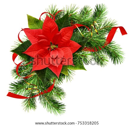Christmas arrangement with pine twigs, poinsettia flower and red silk ribbon bow isolated on white background. Flat lay, top view. #753318205