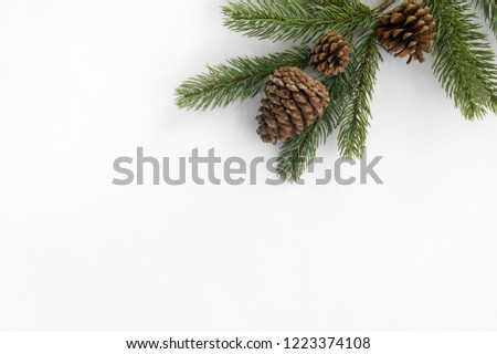 Christmas background. Fir tree branch and pine cones decoration on white paper. Creative flat lay, top view design