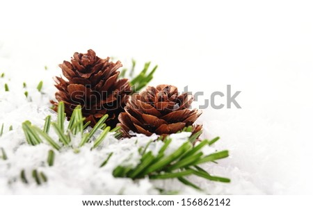 christmas background of branch with cone #156862142