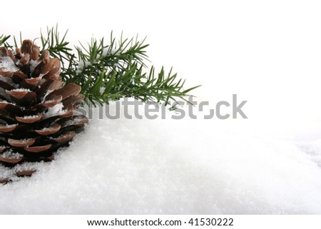 Christmas background of branch with cone