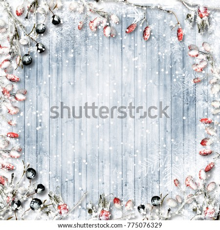 Christmas background. Snow-covered red and black berries on a frozen wooden background
