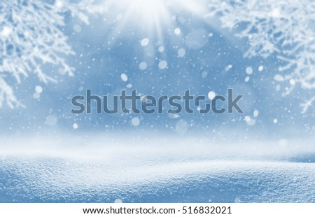 Christmas background. Winter landscape with snowdrifts and tree branches in hoarfrost.