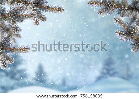 Christmas background with fir tree branch.Merry Christmas and happy New Year greeting card with copy-space.Winter landscape with snow  #756158035