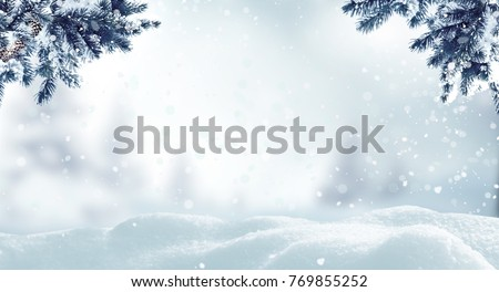 Christmas background with fir tree branch.Winter landscape #769855252