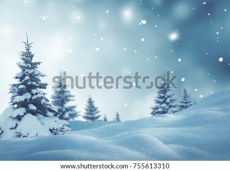 Stock Photo Christmas background with fir trees and blurred bokeh.Winter landscape