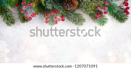 Christmas background with frosted fir tree, copy space and decor