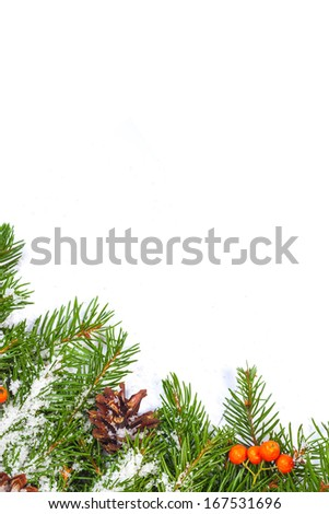 Christmas background with snow, cones and holly berry isolated on white #167531696
