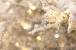 Christmas background with Snow-covered Christmas tree branches and blurred lights on back. Disfocus image.