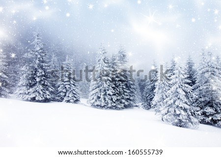 Stock Photo Christmas background with snowy fir trees