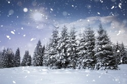 Christmas background with snowy fir trees and heavy snow