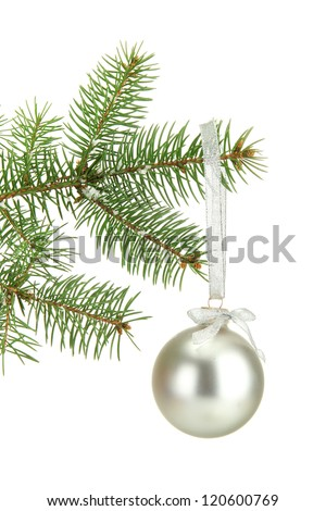 Christmas ball on fir tree, isolated on white
