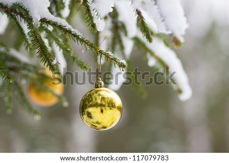 Christmas ball on the fir