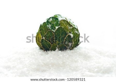 Christmas balls from the leaves in the snow