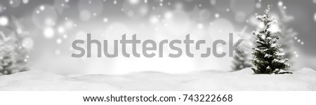 christmas banner panorama background #743222668