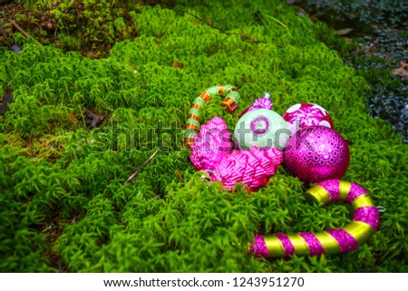 Christmas baubles on green moss. Merry Christmas baubles. Christmas baubles card. Christmas decor in mossy forest #1243951270