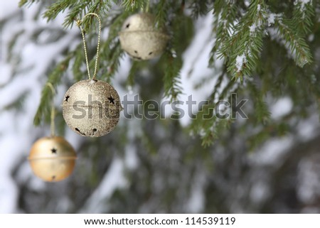 Christmas bells on the firtree in winter