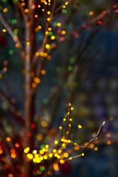Christmas blur (bokeh lights) on the dark background with branches