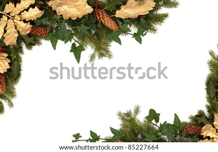 Christmas border of holly, ivy, pine cones, golden oak leaves and blue spruce fir leaf sprig isolated over white background.