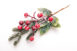Christmas branch with red berries in frost