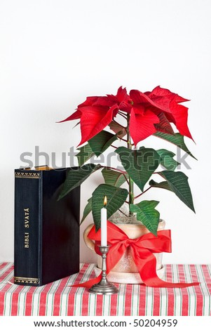 Christmas candle with bible and Christmas flower