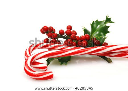 christmas candy canes with a branch of holly on a white background