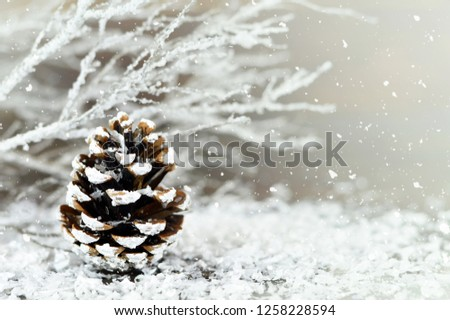 Christmas card. Christmas pine cone in the snow #1258228594