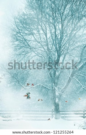 Christmas card design with birds  gathering around a bird feeder during a snow storm.