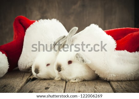 Christmas Card with Couple White Rabbits in Caps of Santa Claus on Wooden Background