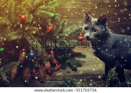 Christmas cat. Kitten playing at Christmas tree. Magic snowfall effect. Wooden background. Copy space. Close up. Toned.