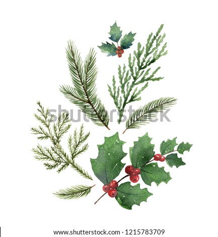 Christmas composition with green fir branches isolated on white background.Illustration for greeting cards, banners, invitations, calendars.