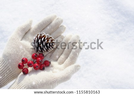 Christmas concept and winter background. Female hands in light knitted mittens in the open palms they keep a fir cone and red berries on a white snow background, copy space. #1155810163