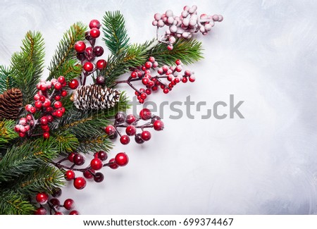 Christmas  decoration background: fir branches and holly berries on light background #699374467