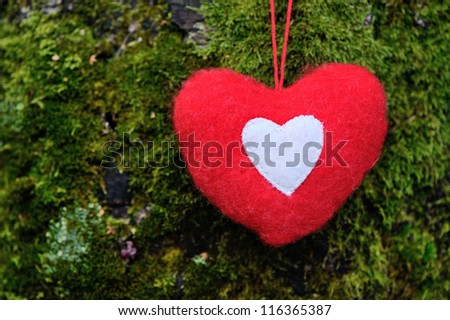 Christmas decoration heart. Background of moss