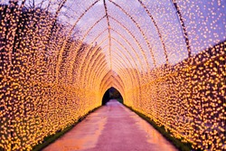 Christmas decoration in the park path. Colourful decor lights lantern tunnel in the evening  in the city during winter.