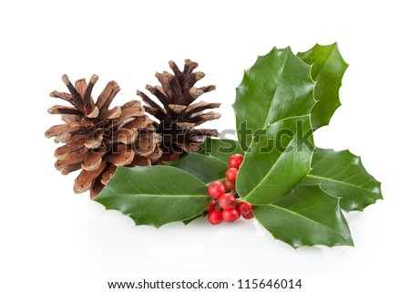 Christmas decoration of holly berry and pine cone